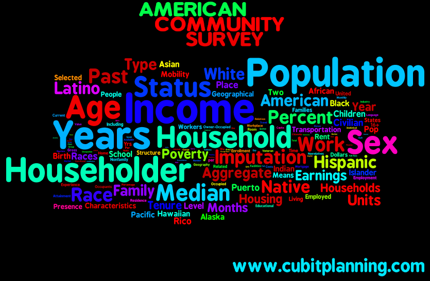 American Community Survey 5 Year Estimate Infographic